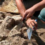 Археологи нашли на Кубани древнегреческую цитадель